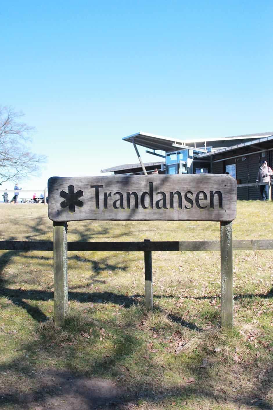 Trandansen kraanvogels Hornborgasjön Zweden