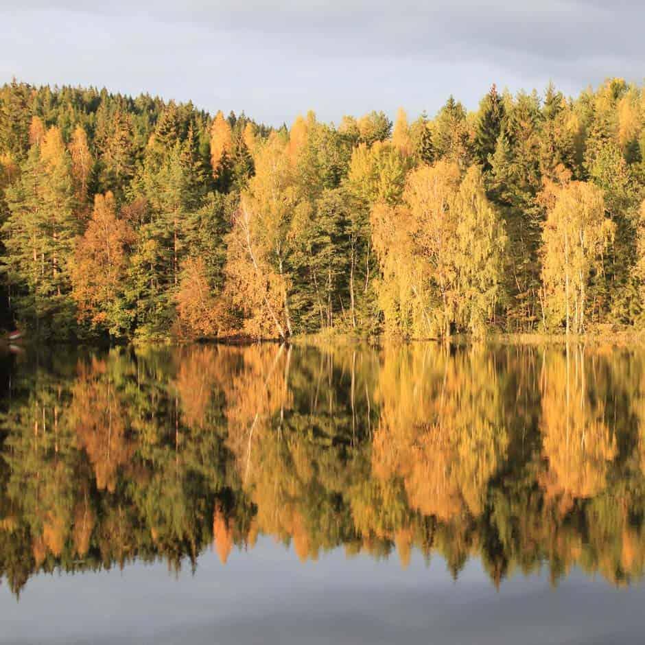 Herfst in Zweden