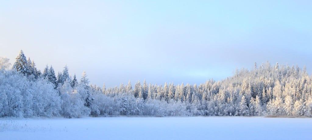 Wintertrektocht Zweden