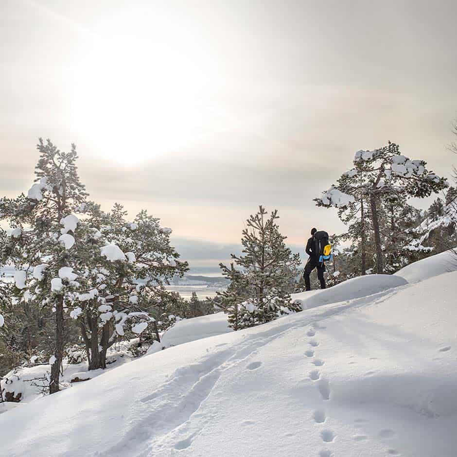 Höga Kusten Winter