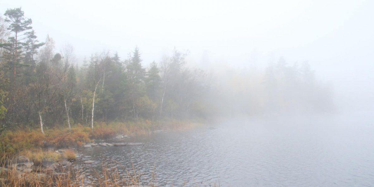 natuur Zweden
