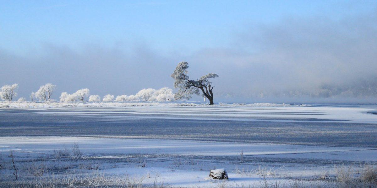 sneeuwschoenwandeling