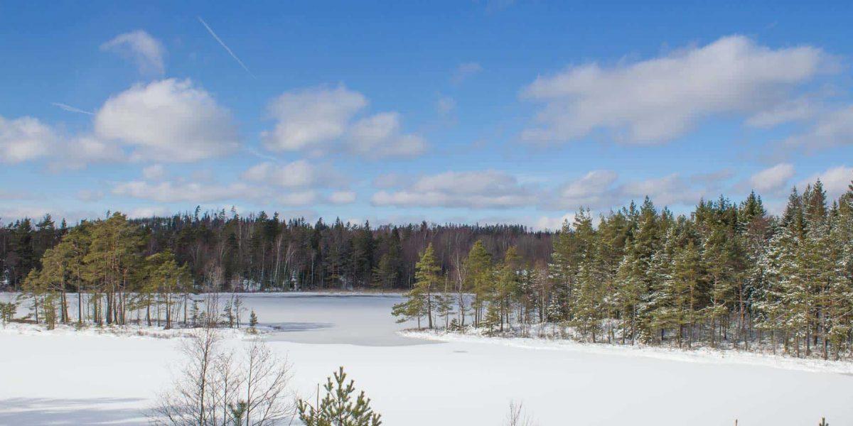 Lente-herfst-winter-12-2